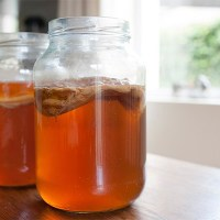 Чайный гриб - состав, лечебные свойства и применение