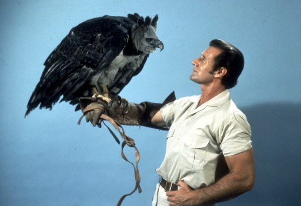 It is a Harpy Eagle. The world's largest Eagle. – Virtual ...
