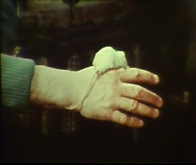 An arm is stretched out with a well-groomed white mouse resting between the thumb and forefinger.