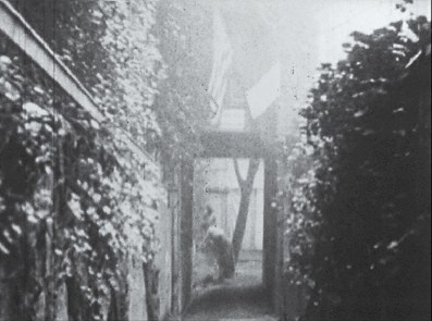 A doorway hung with flags in a vine covered alley.