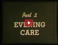 Evening Care