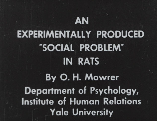 Shared Suffering Onscreen:  Animal Experiments and Emotional Investment in the Films of O. H. Mowrer