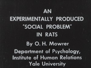 Title screen for An experimentally Produced Social Problem in Rats.