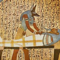 Egyptian Medicine Resources