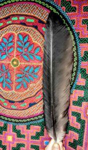 medicine-weavings-condor-icaros