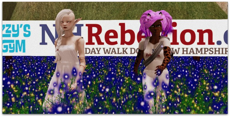 Izzy & Caitlyn walking in the virtual New Hampshire Rebellion
