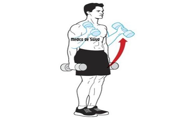 Entregue ejercicios de entrenamiento de fuerza cómo tratar el dolor de músculo braquiorradial Cómo tratar el dolor de Músculo braquiorradial Screenshot 22 21