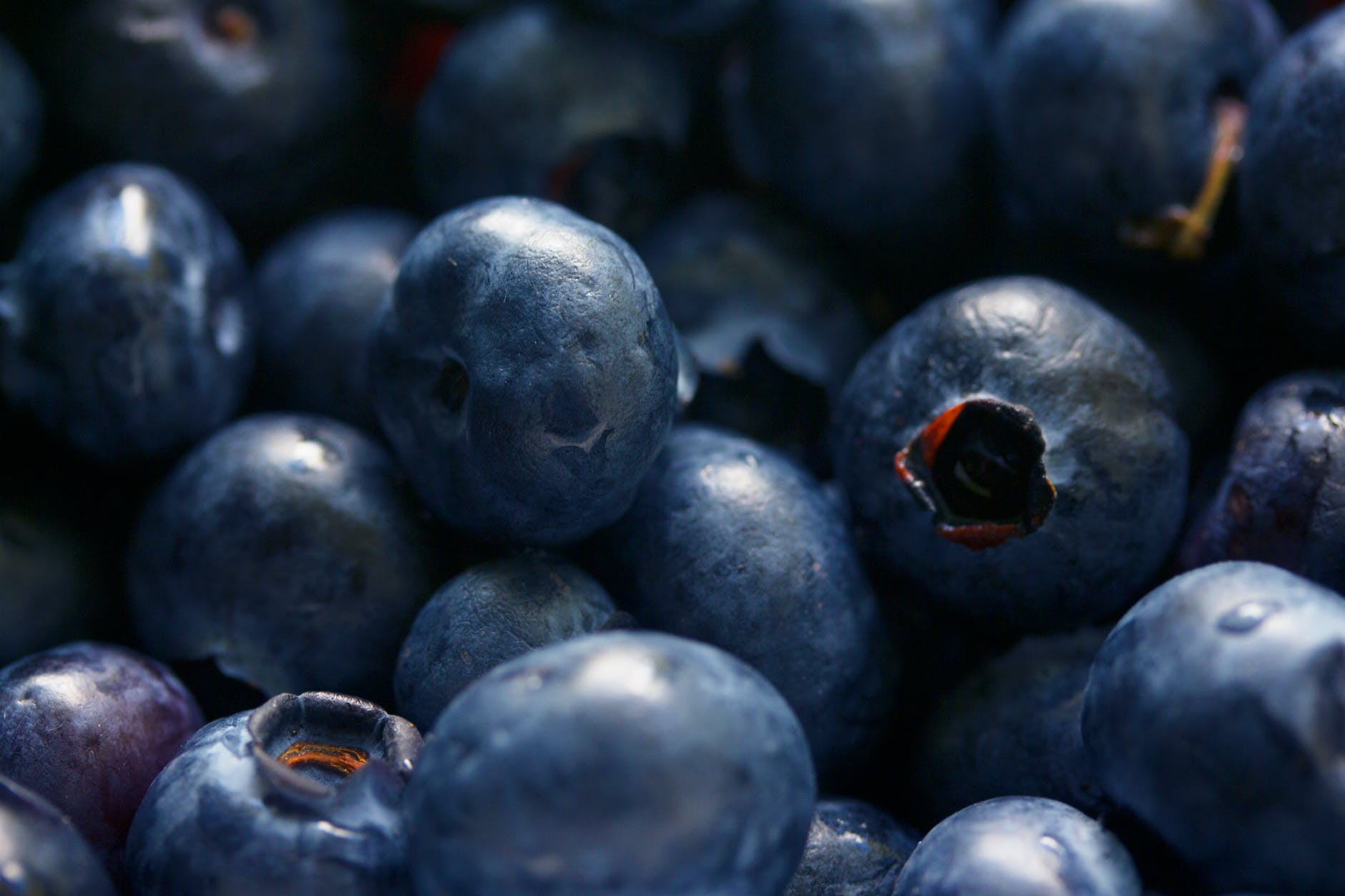 The Nutritional Benefits of Blueberries