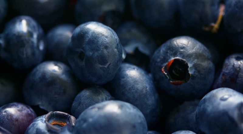 Nutritional benifits of blueberry