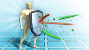Find Ways to Boost Your Immune System