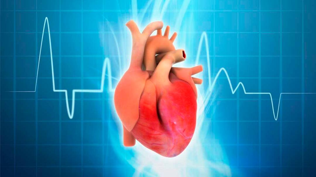 Arritmias cardíacas: prevención, causas y tratamiento