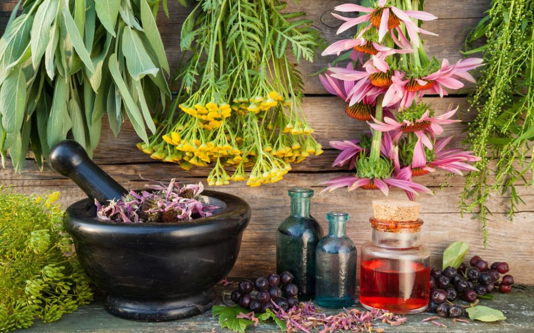 Tipos de homeopatía