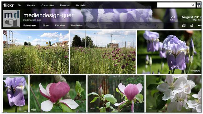 Flickr: Neues Design und Neue Bildgrößen für Buddy Icon und Cover Photo (1/5)