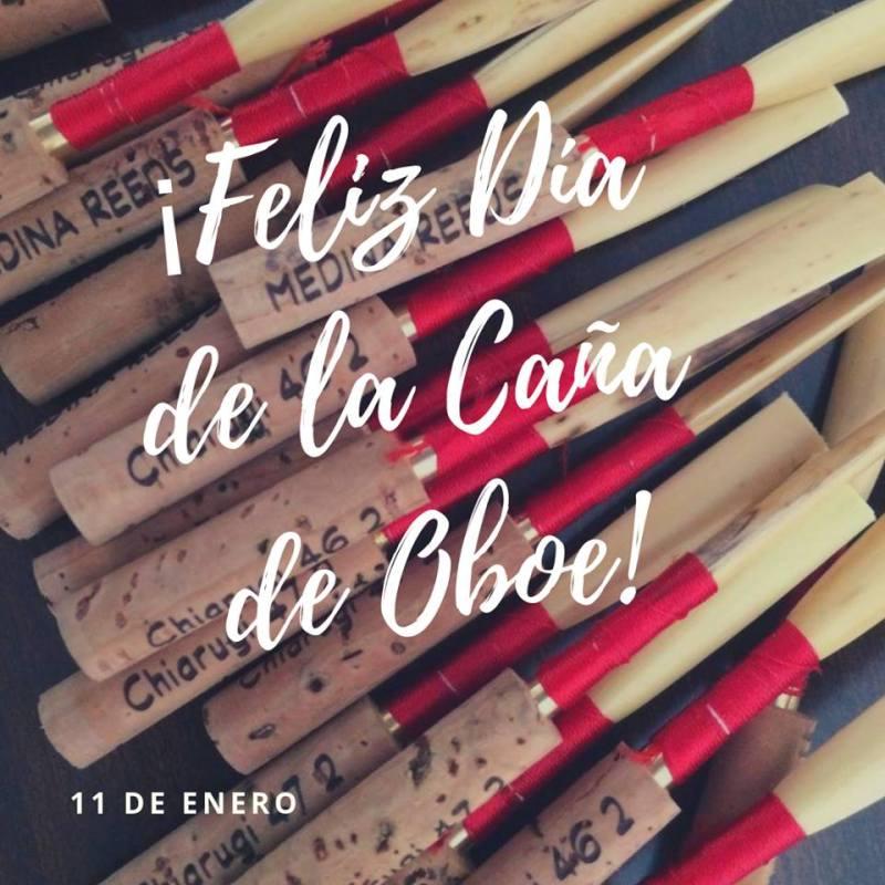 día oficial caña de oboe
