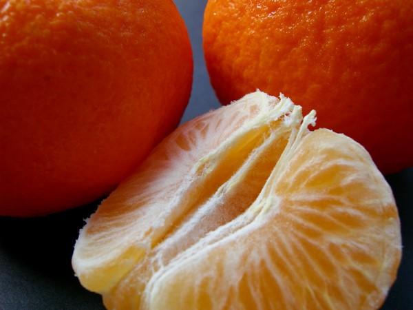 Cómo plantar mandarinas. Ficha completa e