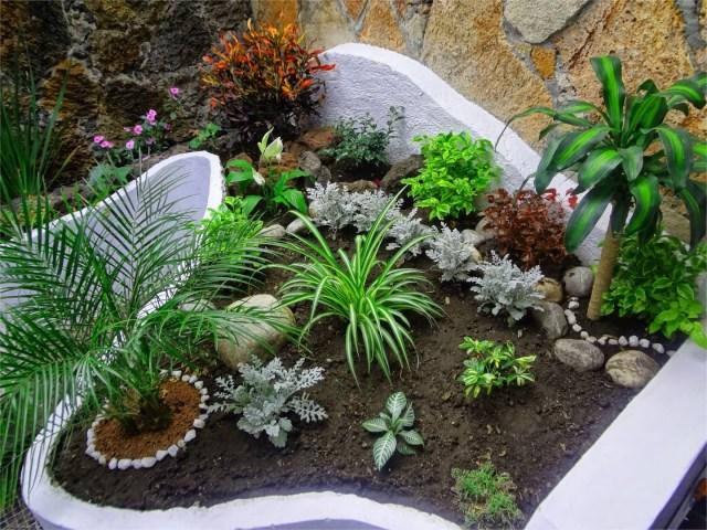 Fondos de pantalla de jardinería ba