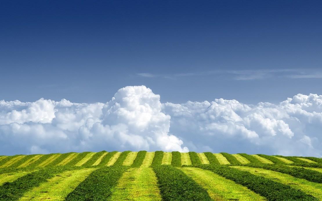 Nubes ab