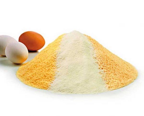 Cómo hacer huevos en polvo