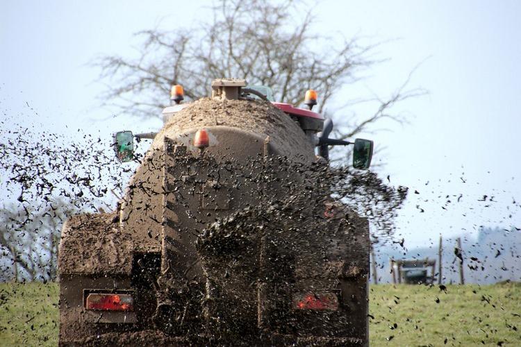 Abonos y fertilizantes ecológicos y químicos - Todo lo que tienes que saber
