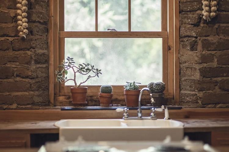 Trucos para decorar tu hogar con cactus y suculentas