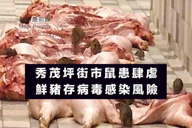 【秀茂坪街巿鼠患肆虐】鮮豬肉存病毒感染風險