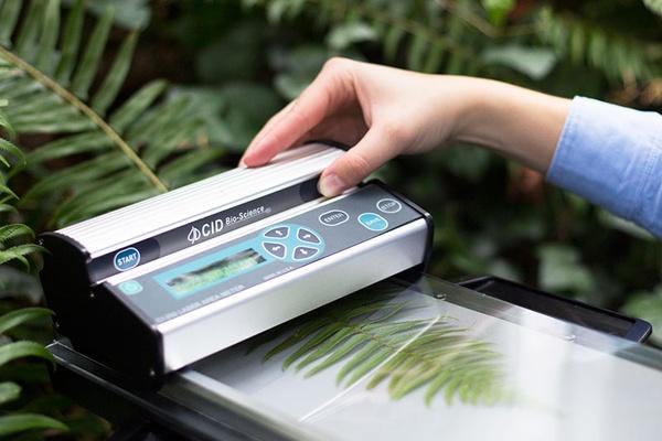 Medidor portatil de area foliar