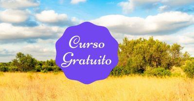 Curso Gratuito Mindfulness