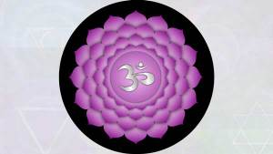 Crown Chakra (seventh chakrasana.)