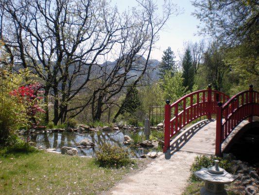 buddhismul zen meditatie