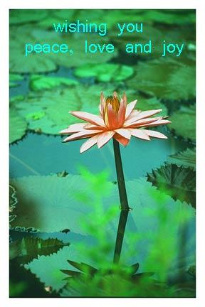 Free Ecard Inspirational Friendship Love Send Free