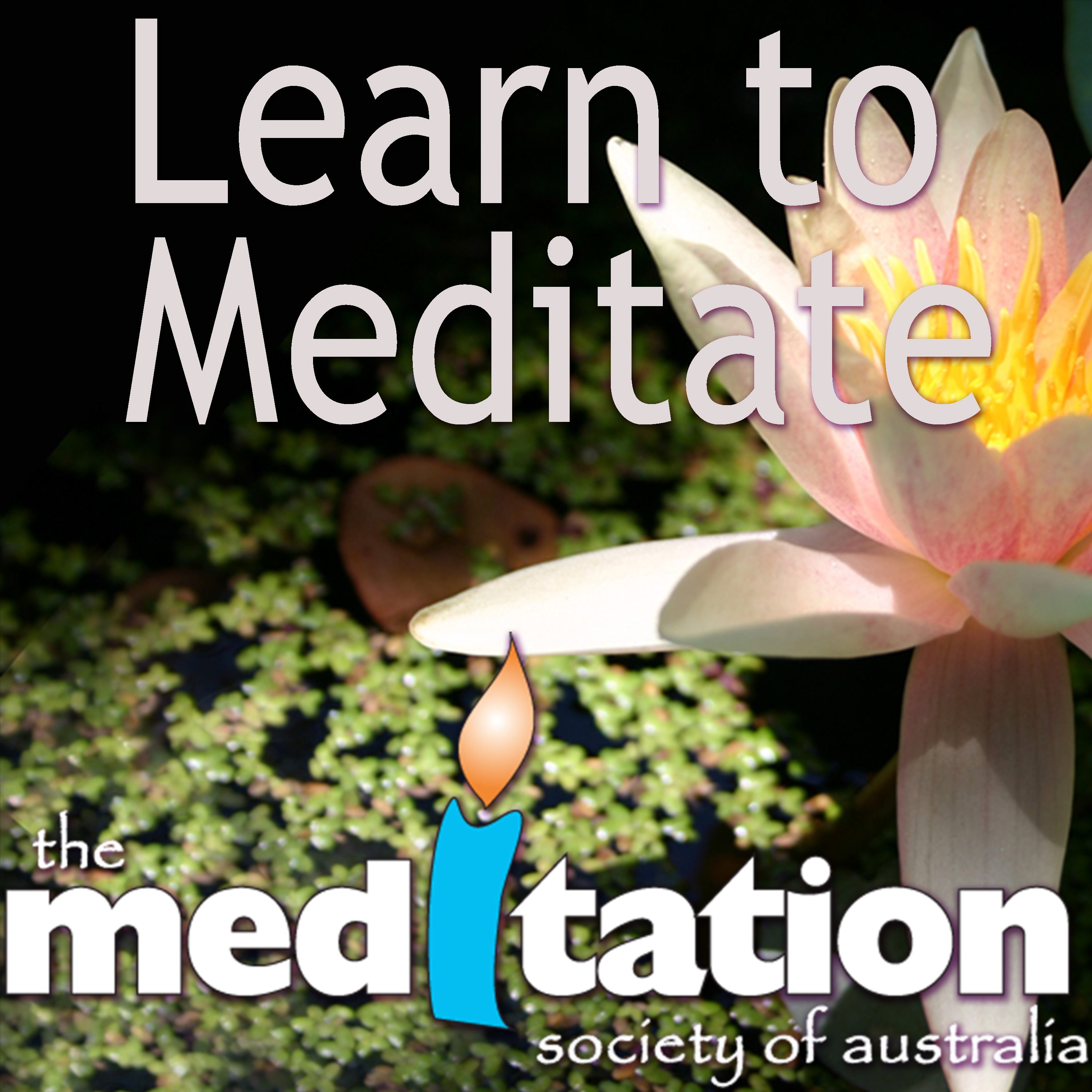 Free Guided Meditation Downloads With Various Meditation
