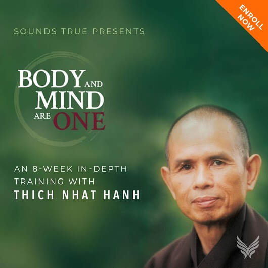 thich nhat hanh body and mind