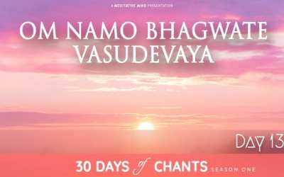 DAY 13 | OM NAMO BHAGVATE VASUDEVAYA – Mantra Chanting Meditation Music