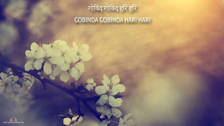 Gobinda Hari Mantra Wallpaper
