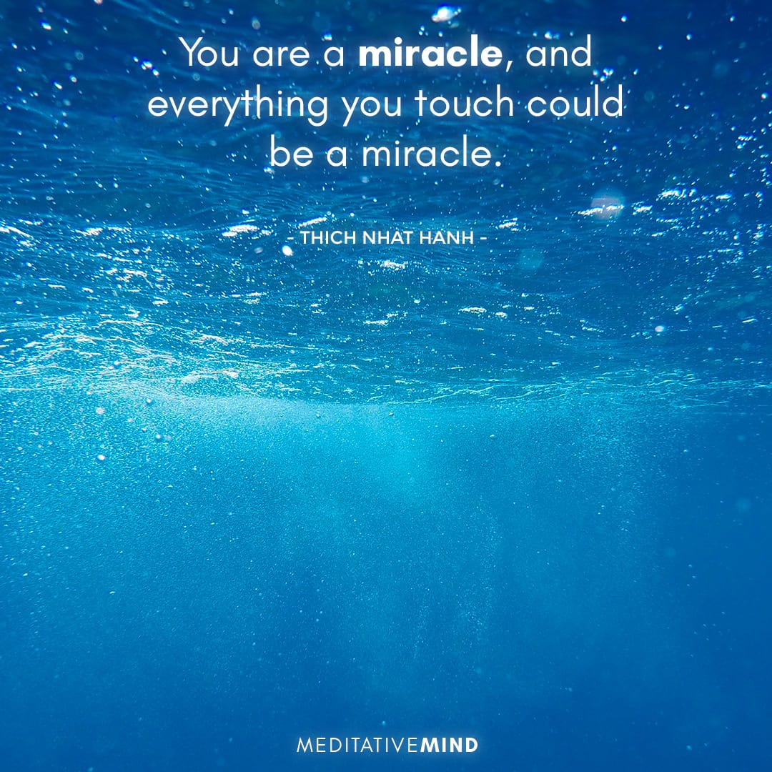 You are a miracle, and everything you touch could be a miracle.