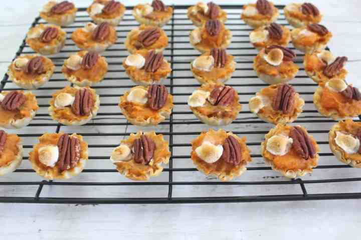 Phyllo Shells Sweet Potato Bites topped with pecans and marshmallows.