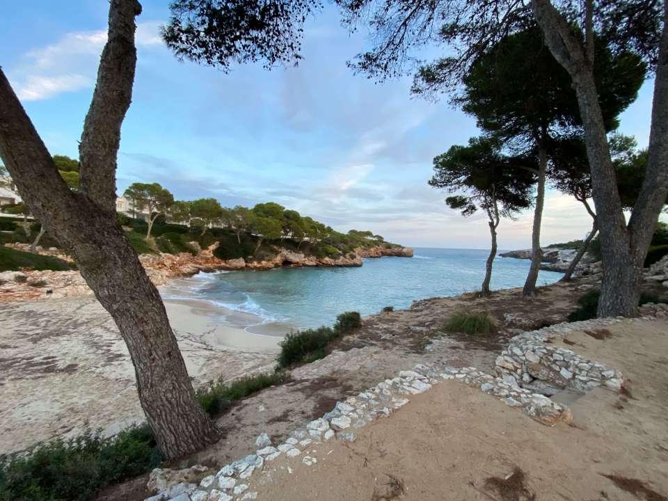 Vedroño en Mallorca