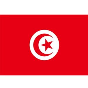 tunisie_drapeau