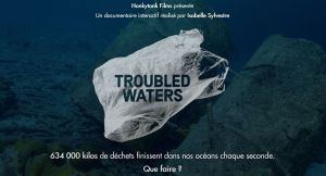 troubledwaters-site