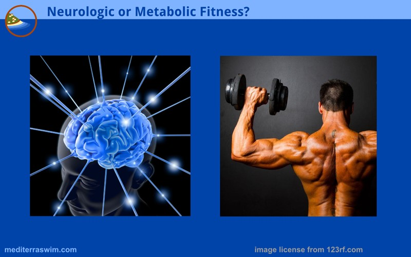 1512 neurologic metabolic 800x500