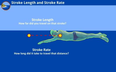 Small Steps Toward A Longer Stroke