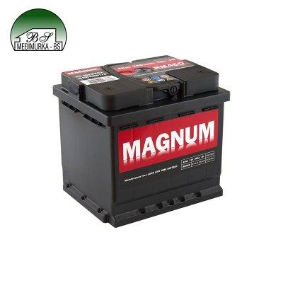 Magnum 12V 55Ah D+