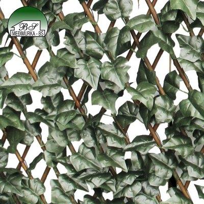 Rešetkasta ograda od vrbe s lišćem