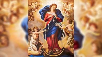 Photo of Večeras završava molitveni maraton s Papom Franjom: Molimo Mariju da razveže čvorove koji tište čovječanstvo