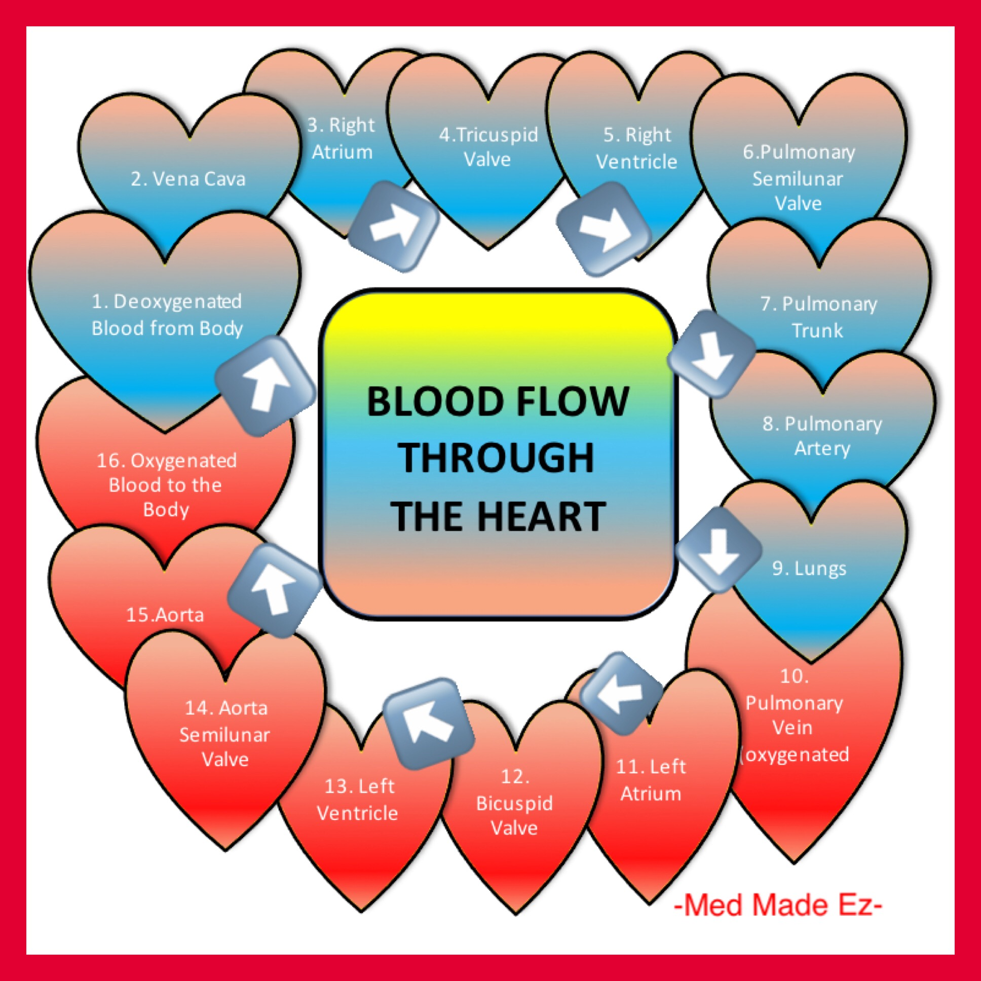 Blood Flow Through The Heart Med Made Ez Mme