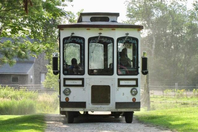 medolark's trolley