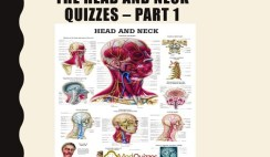 The Head and Neck Quizzes – Part 1