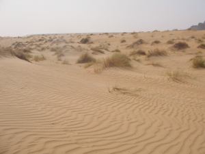 dakhlet_dunes-03