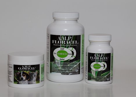 AMP-Floracel-Organic-Aloe-Supplement-for-Digestive-or-Auto-Immune-Diseases-or-Disorders-0-1