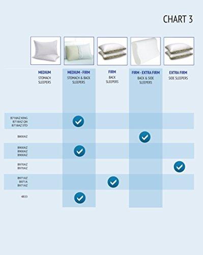 Beautyrest-Latex-Foam-Pillow-Standard-Size-0